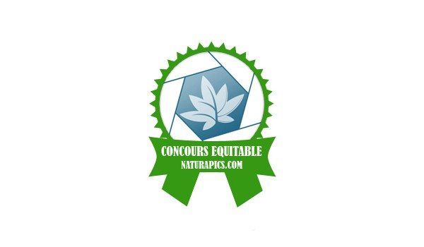 Logo equitable naturapics cceng 600x350